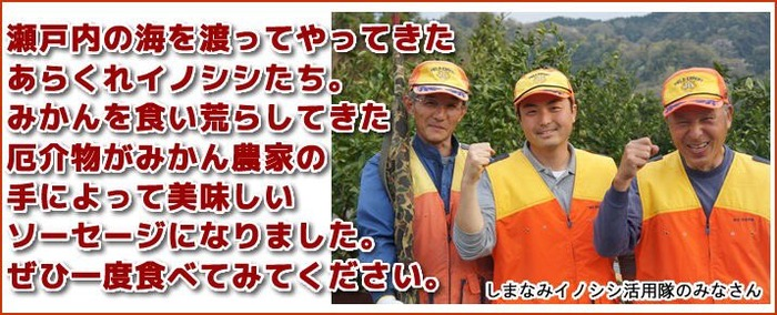 f:id:daruyanagi:20170118204723p:plain