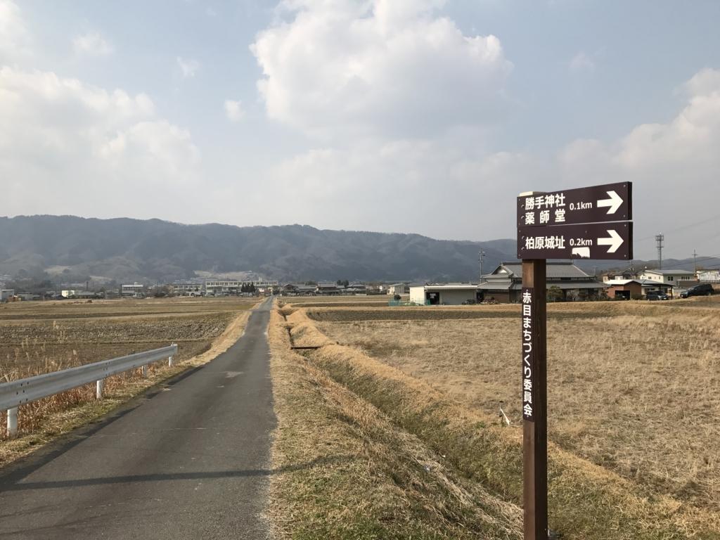f:id:daruyanagi:20170319143343j:plain