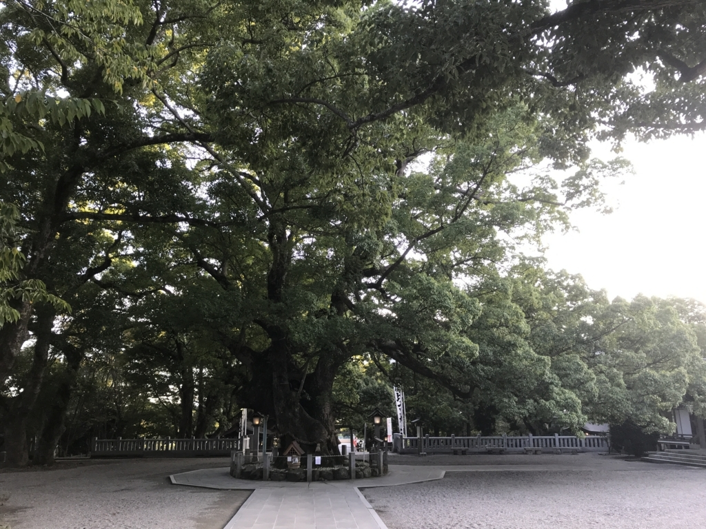 f:id:daruyanagi:20171008163336j:plain