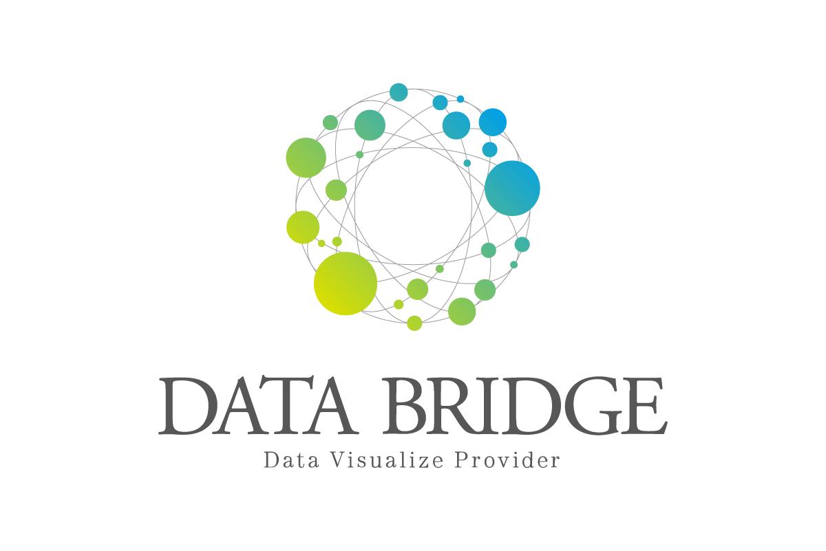 DATA BRIDGE