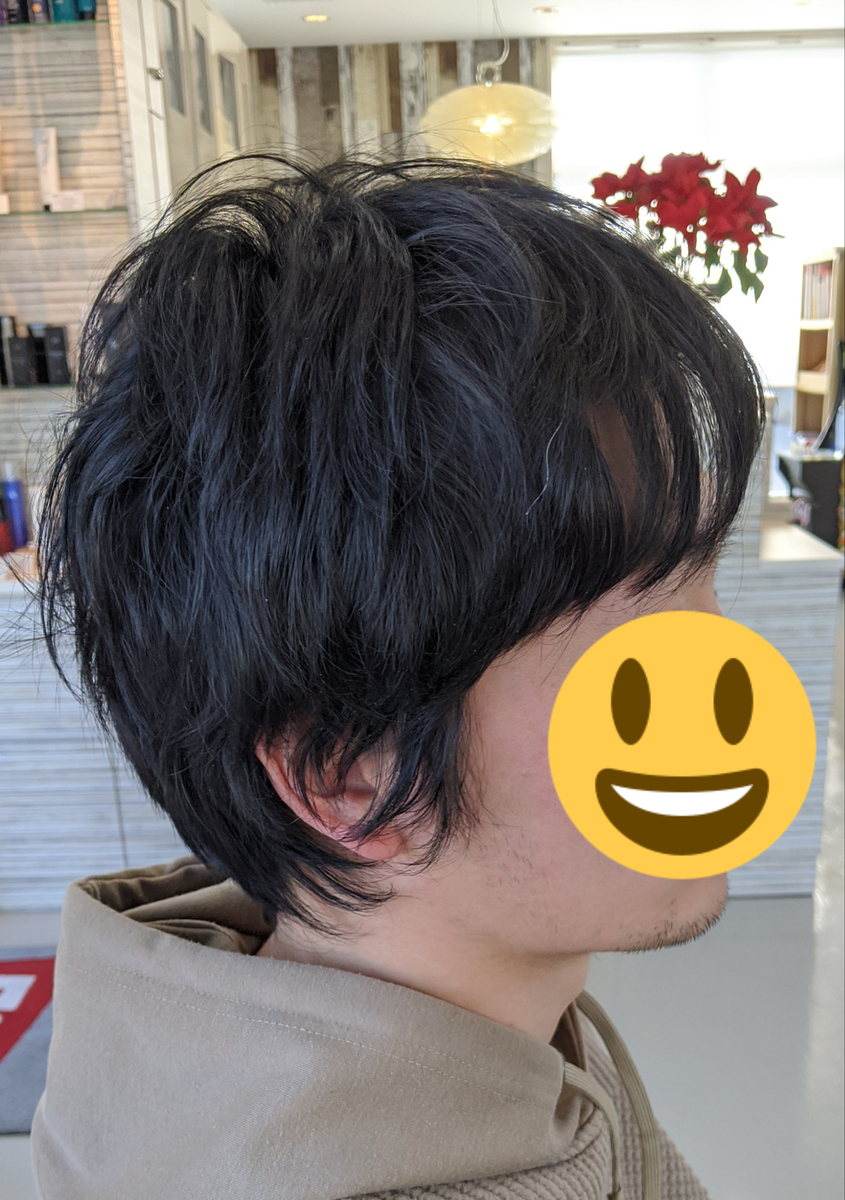 f:id:datsutokio:20200207233023j:plain