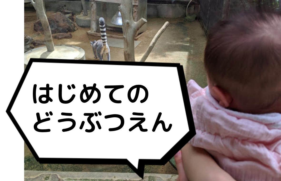 f:id:datsutokio:20200618233302p:plain