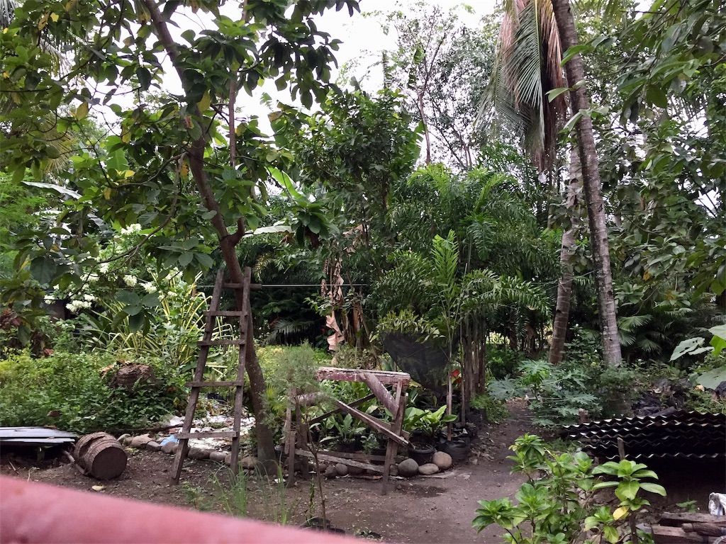 f:id:davaomania:20190203100629j:image