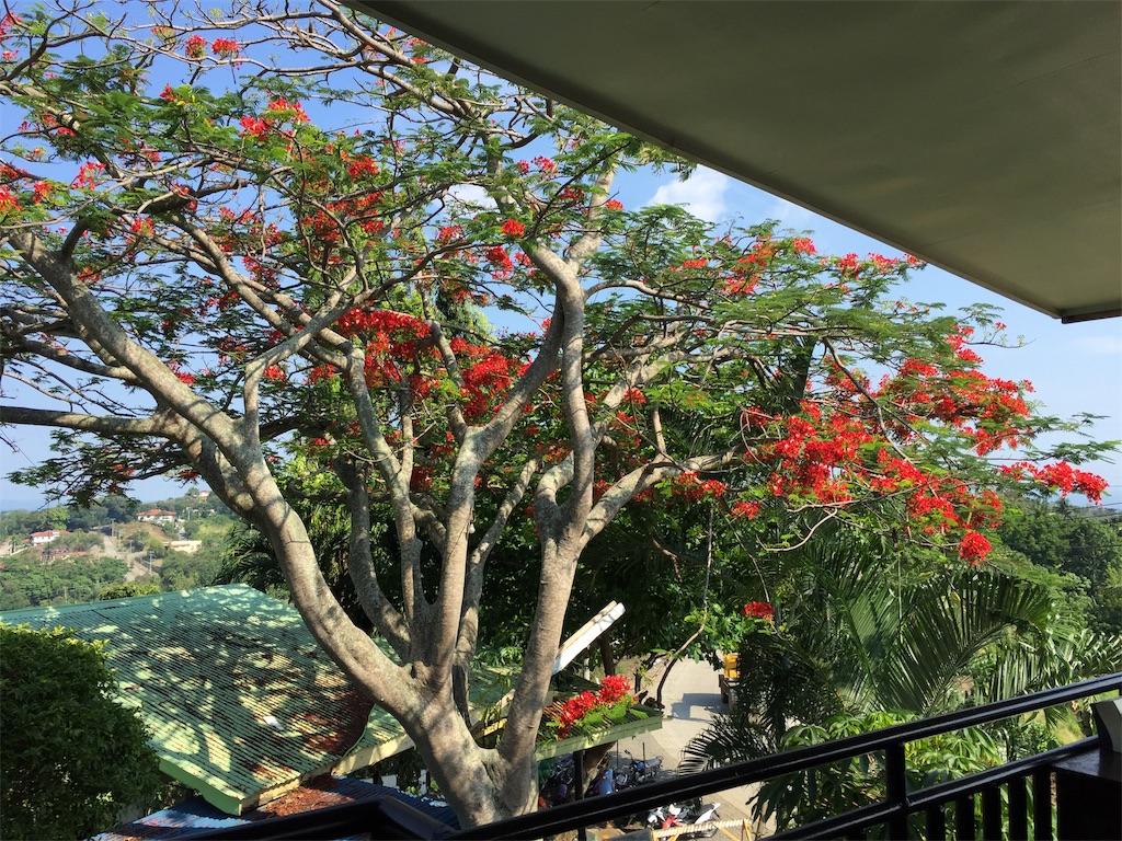 f:id:davaomania:20190505124946j:image