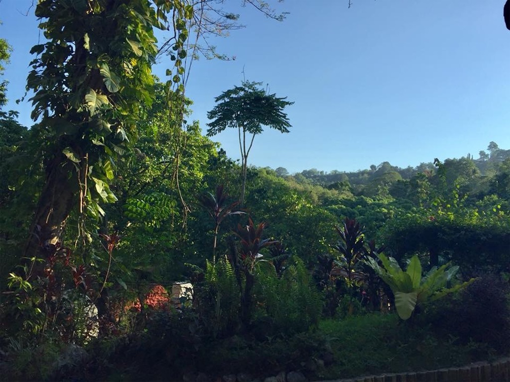 f:id:davaomania:20190605224137j:image