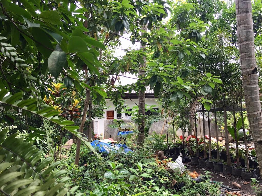 f:id:davaomania:20190629131826j:image