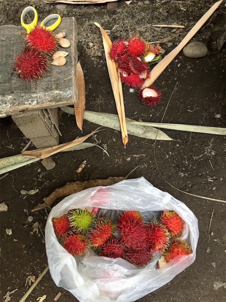 f:id:davaomania:20190824191543j:image