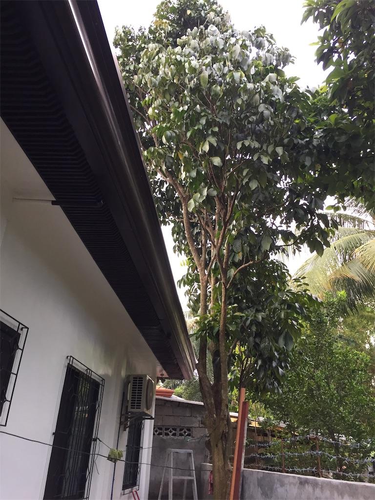 f:id:davaomania:20190917204406j:image