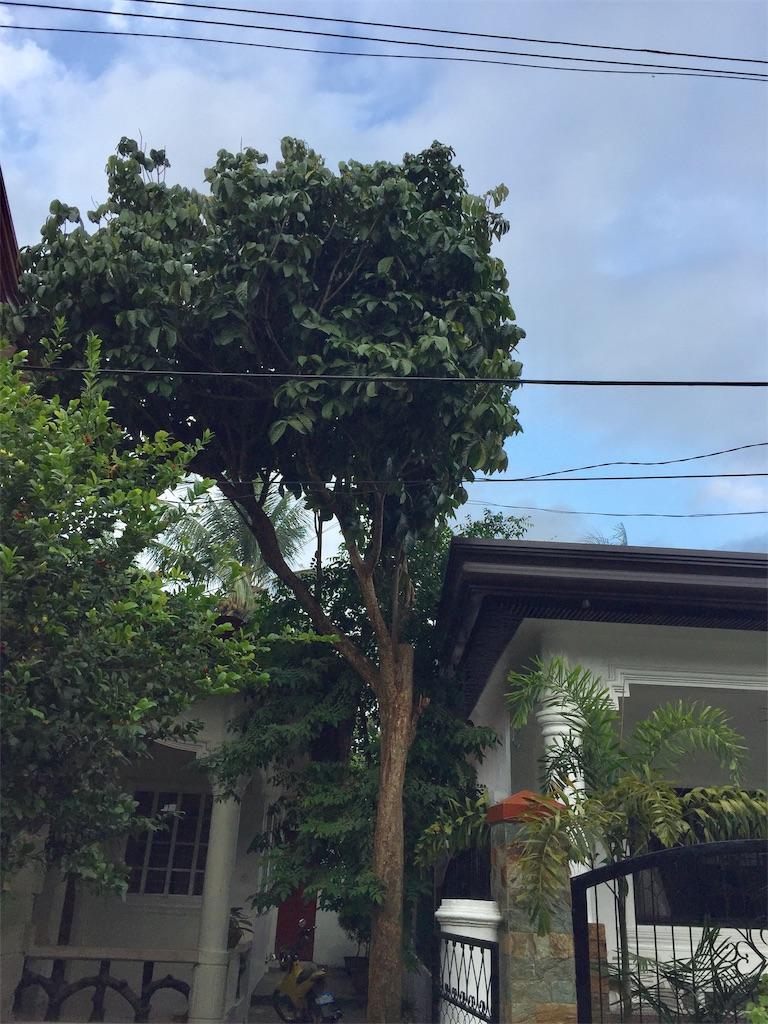 f:id:davaomania:20190917204436j:image