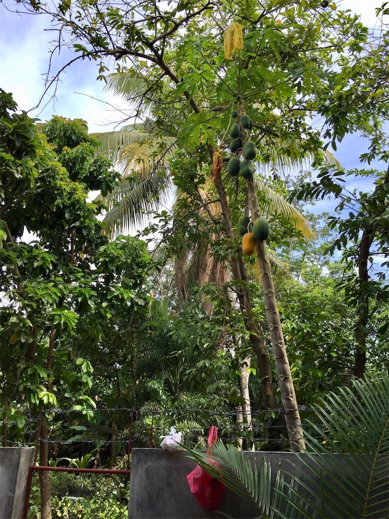 f:id:davaomania:20191027110758j:image