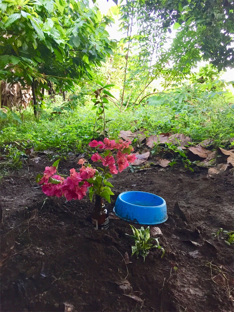 f:id:davaomania:20191207083751j:image