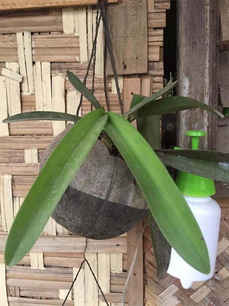 f:id:davaomania:20191207224401j:image