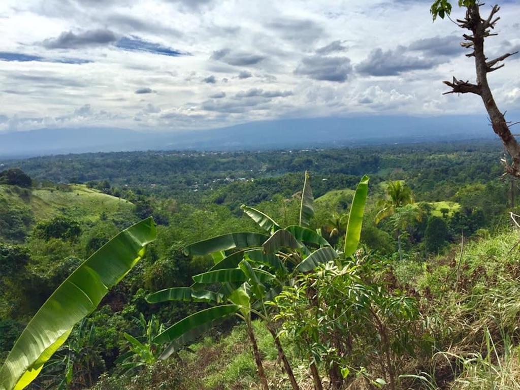 f:id:davaomania:20200119105246j:image