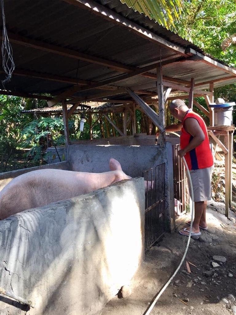 f:id:davaomania:20200314113522j:image