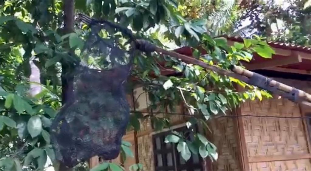 f:id:davaomania:20200821115621j:image
