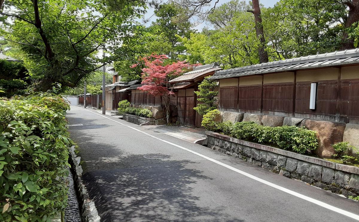 f:id:days-in-kyoto:20210618074656j:plain