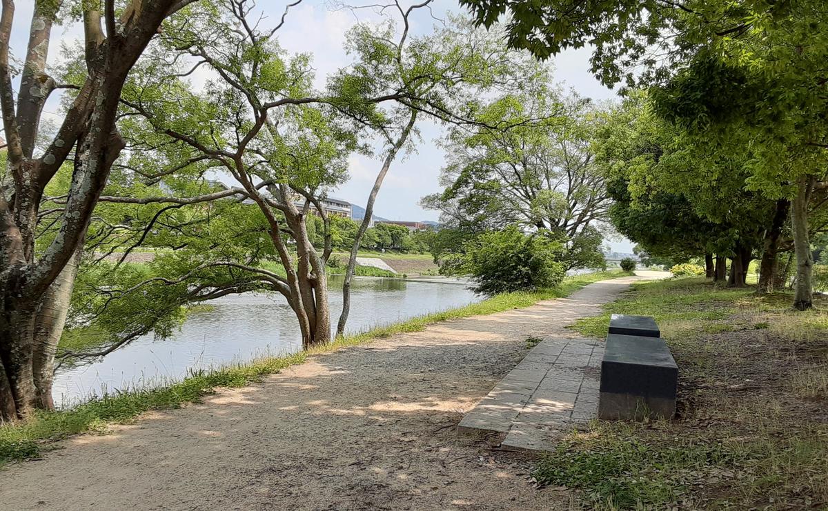 f:id:days-in-kyoto:20210627062731j:plain