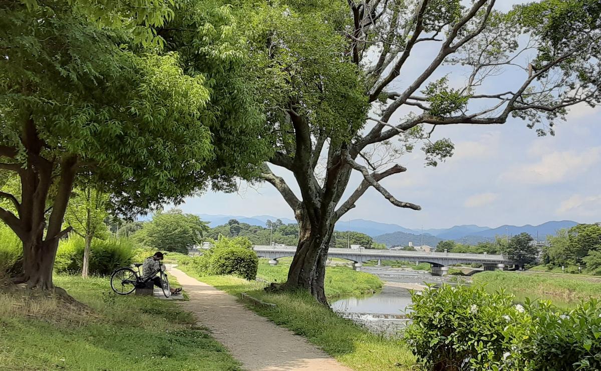 f:id:days-in-kyoto:20210627062806j:plain