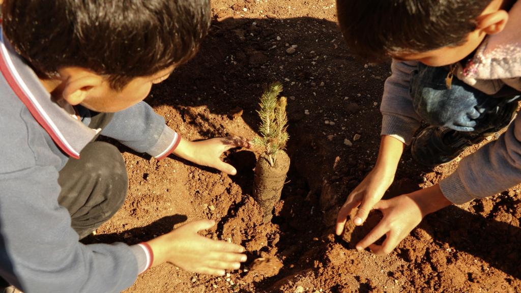 木を植える子ども達