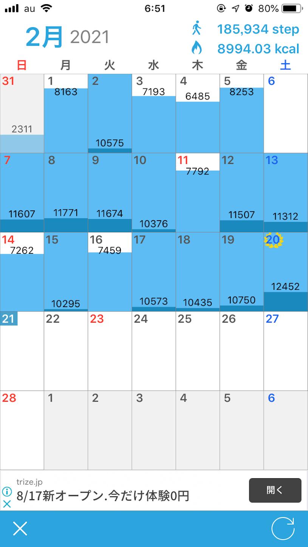 f:id:dazz_2001:20210221065416p:plain