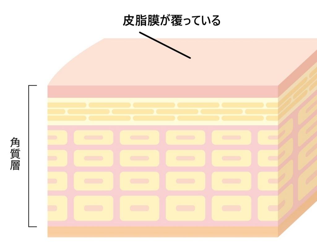 肌のバリア機能の説明図