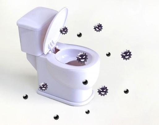 トイレ掃除はばい菌がいっぱいで汚い