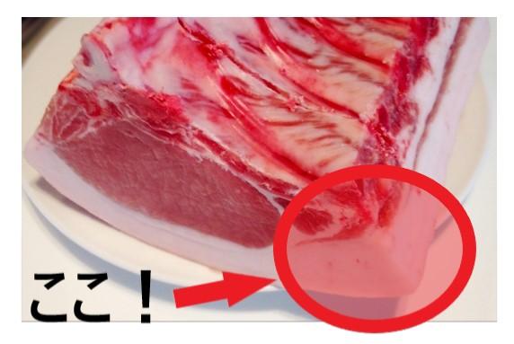 豚肉の動物性たんぱく質と脂肪
