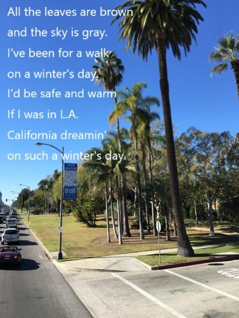 ロスアンゼルスの風景