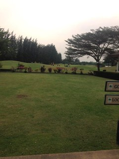 ザ パインゴルフ アンド ロッジのゴルフ場
