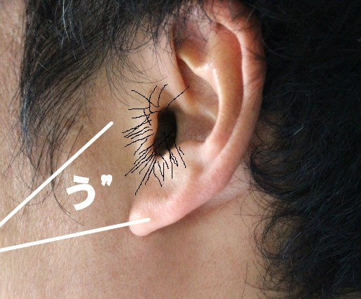 耳毛が生えている男性