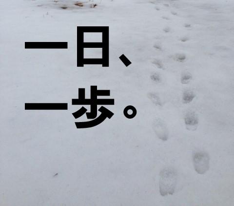 雪の上に刻まれた足跡。一日一歩のテキスト入り