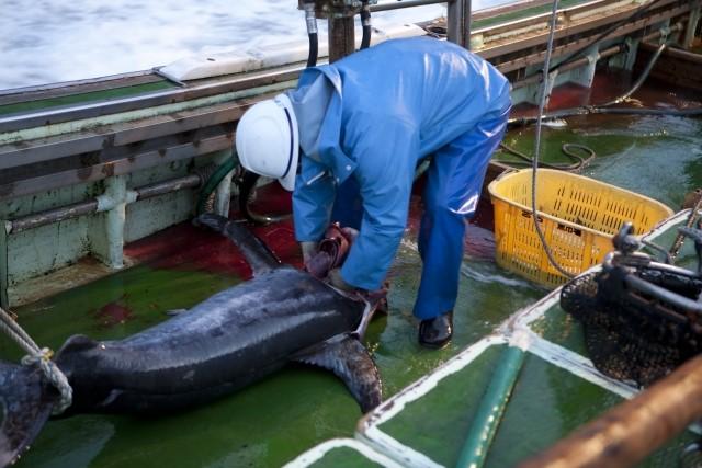 船上にいる漁師