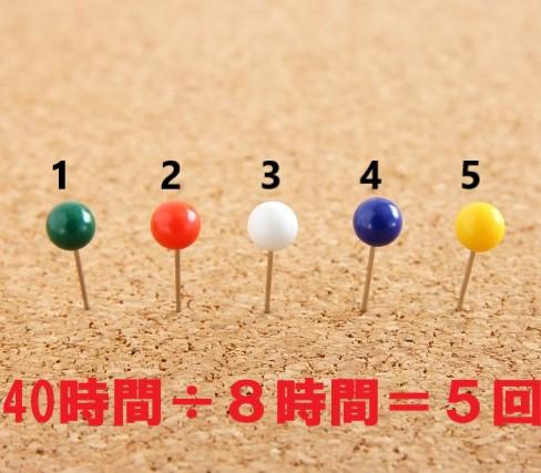 5本並んだカラフルな虫ピン