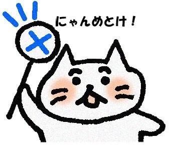 やめとけ!と言う猫