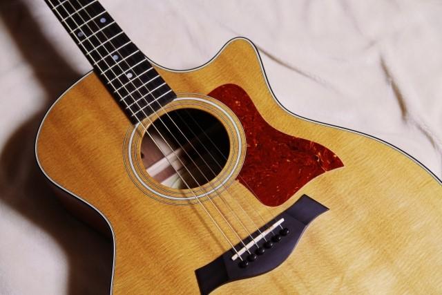 松山市で捨てると粗大ごみに分別されるアコースティックギター