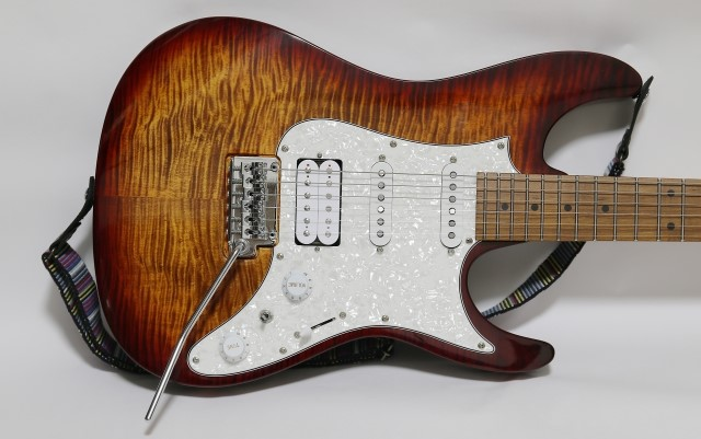 沼津市では捨てないエレキギター