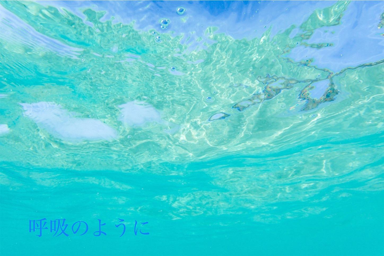 f:id:decobocode:20200123180827j:image
