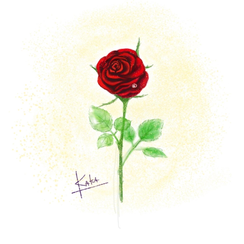 星の王子さま一輪のバラ