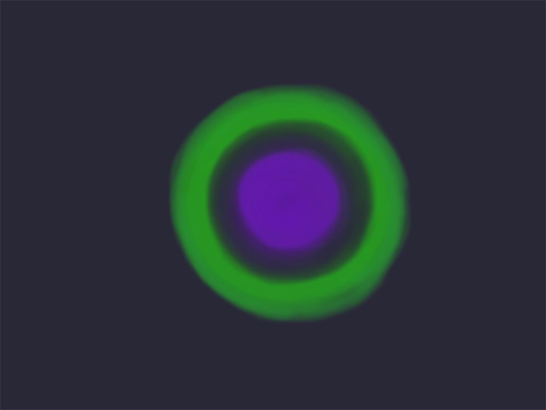 f:id:decobocode:20200417012446j:image