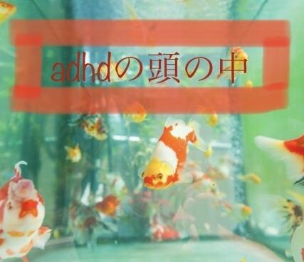 ADHDの頭の中には金魚が泳いでる
