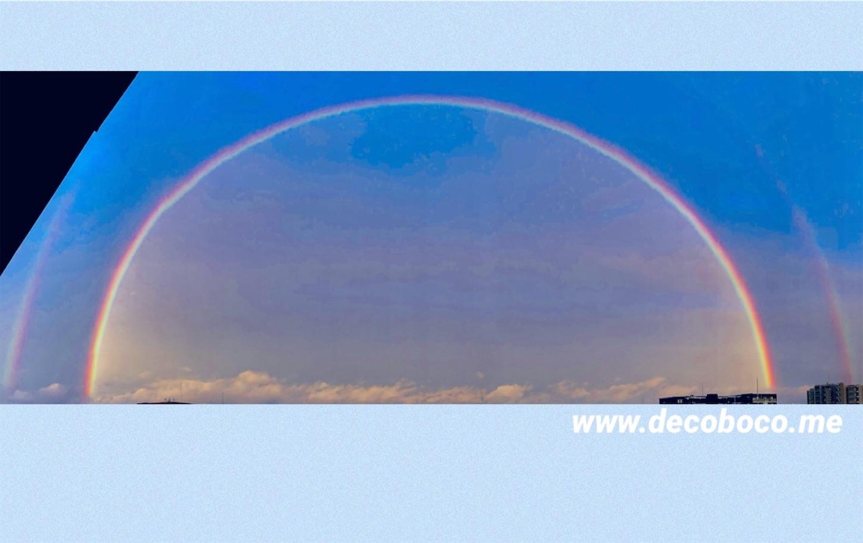 f:id:decobocode:20210430121848j:image