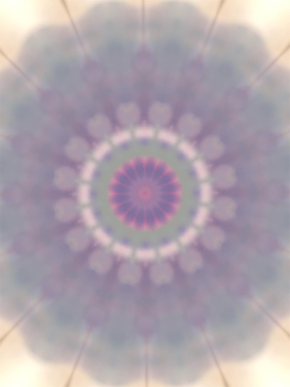 f:id:decobocode:20210504090111j:image