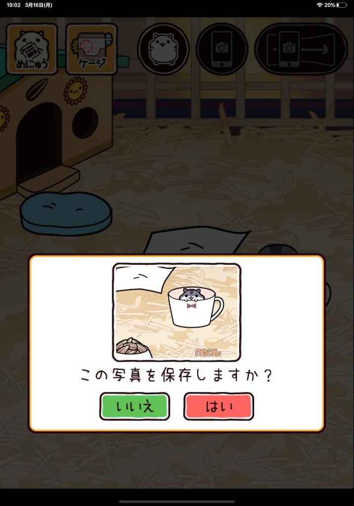 f:id:dedashidake:20200316193927p:image