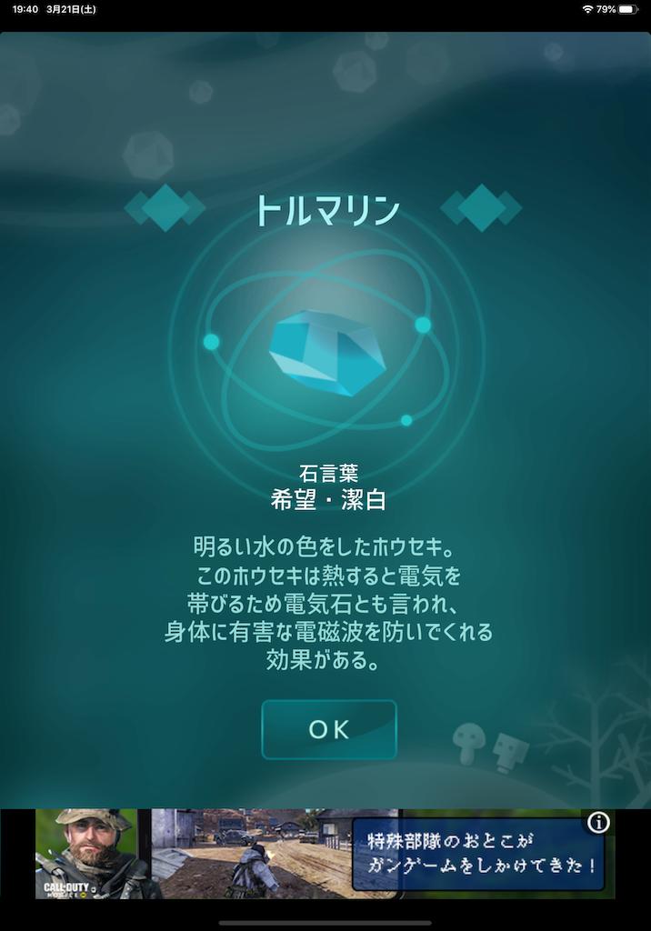 f:id:dedashidake:20200321195111p:image
