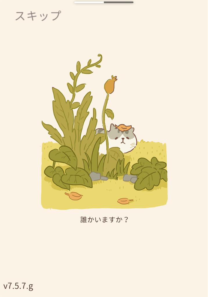 f:id:dedashidake:20200725163236p:image