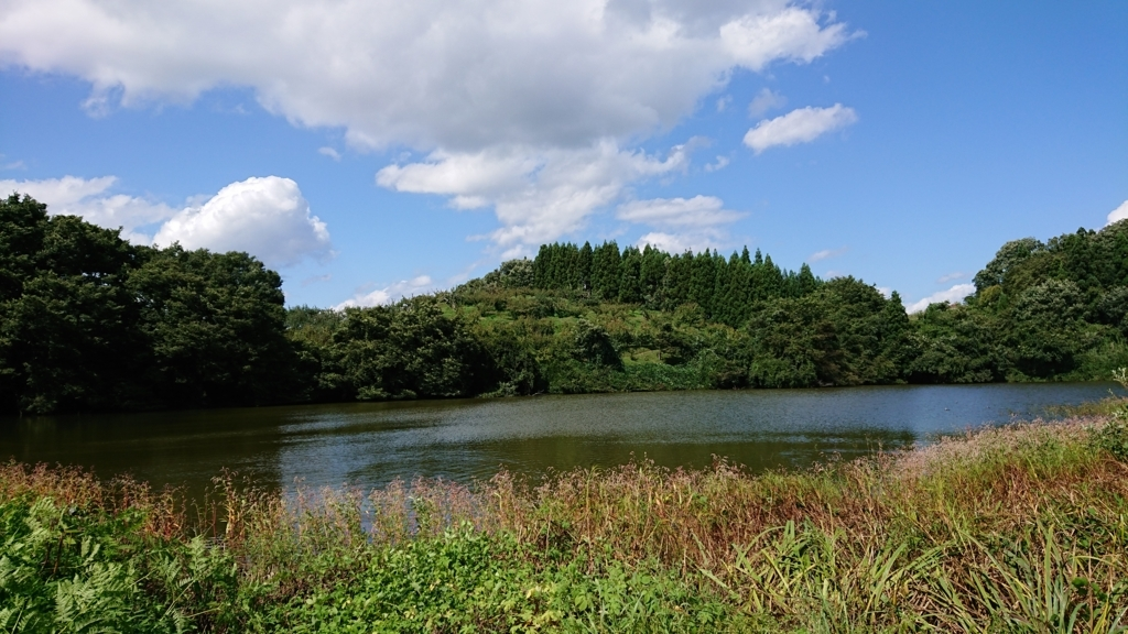 f:id:deep-karuma-waap-ec-real-s1:20171017220035j:plain