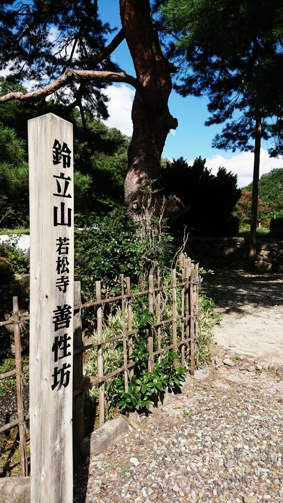 f:id:deep-karuma-waap-ec-real-s1:20171019220010j:plain