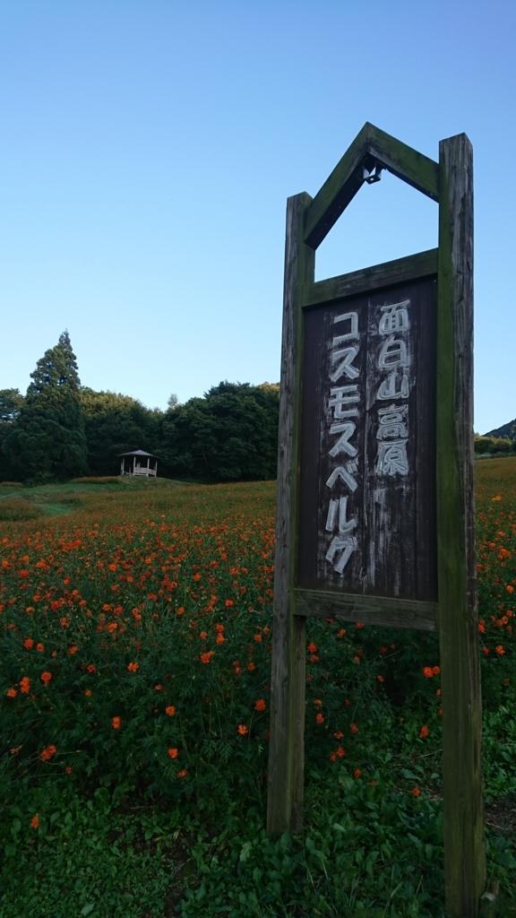 f:id:deep-karuma-waap-ec-real-s1:20171205144105j:plain