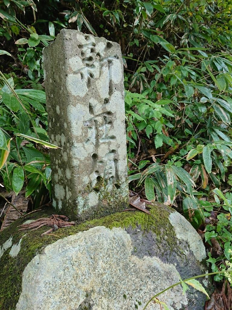 f:id:deep-karuma-waap-ec-real-s1:20181005212941j:plain