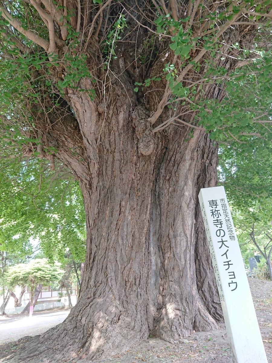 f:id:deep-karuma-waap-ec-real-s1:20190621021621j:plain